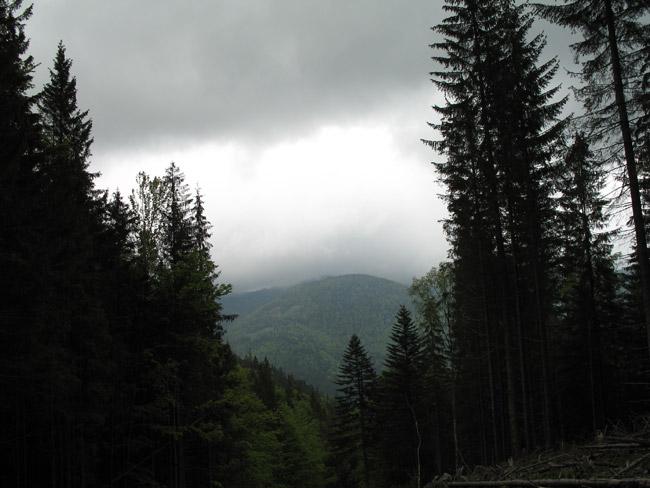 Карпати, хмарно
