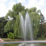 Камянецький фонтан