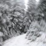 Зимова фантасмагорія (випадково покрутив рукою при натисканні на кнопку спуску)