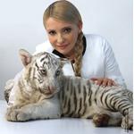 Тигрюля