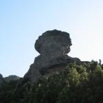 Цей камінь здалеку мені нагадує голову римського воїна
