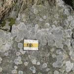Камінь, на якому напис німецькою мовою