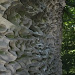Рельєф каменя