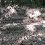 Такою дорогою я ходив і шукав скелі