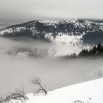 Туман розсіюється