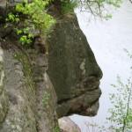 Камінь, подібний на профіль Потоцького