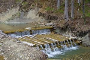 Буковинські водограї
