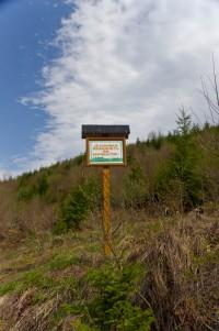 Лісівники працюють у лісівництві