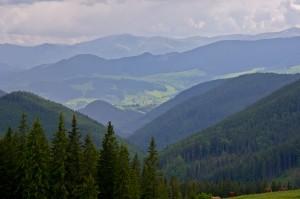 Карпатский краєвид