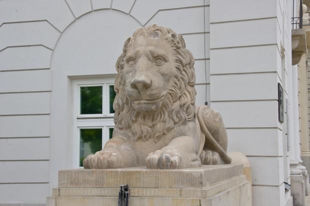 Леви є не тільки у Львові