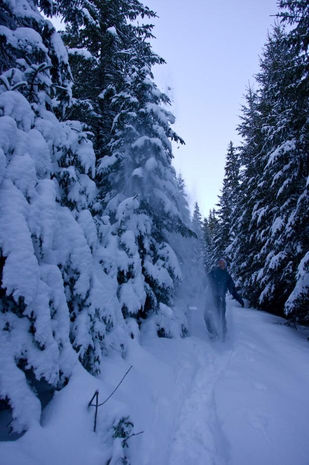 Сніжний привид